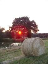 Coucher de soleil sur l'étang des Combes